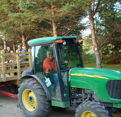 There is no need to walk all the way out to the orchard; a friendly tractor driver will deliver you there after a short wagon ride.