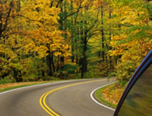 The time is now to escape to fall colors a short drive from Chicago