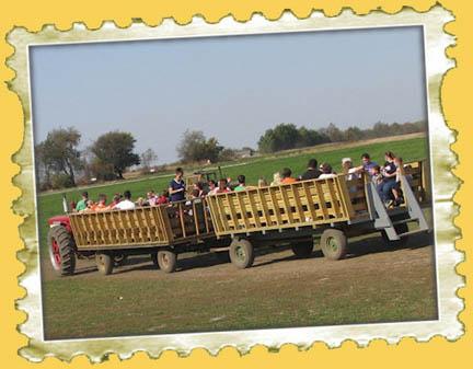 wagon ride to pumpkin patch
